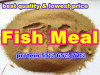 Fish Meal for Feed (protein 55% 65% 72%)