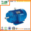 LTP Y Series Thermally Protected Motor