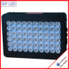 Hydroponic System 300W LED Grow Lights for Greenhouse