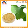 Pure Natural Ginko Fruit Extract