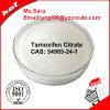 No Side Effect Powder Tamoxifen Citrate CAS: 54965-24-1