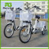China Factory Supply Three Wheel Adult Electric Cargo Tricycle Bicycle