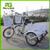 Lightweight 250W Brushless Gear Three Wheel Electric Cargo Tricycle Bike