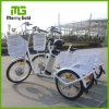 Lightweight 250W Brushless Gear Three Wheel Electric Cargo Tricycle Bike
