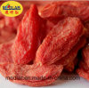 Ningxia Organic Dried Red Goji Berry (Wolfberry) --220 Grains