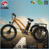 500W Fat Tire E Scooter Electric Tricycle with Suspension