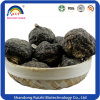 Organic Maca Root with Black Color