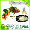 Effective Supplement Vitamin K1 Powder Online