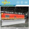 Plate Cutting Machine with Best Price From Vasia Machinery
