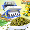 New Model High Quality CCD Green Bean Color Sorter