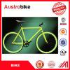 700c Customized Flip-Flop Hub Single Speed Fixed Gear Bike Modern Design