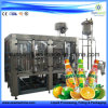 Juice Line Small Capacity