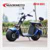 2018 EEC Approved City Coco Electric Scooter Es8004viiieec