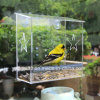 100% Clear Acrylic Window Bird House, Best Outside Window Mounted Bird Feeders for Kids & Cats