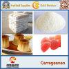 Good Additives Thickener Stabilizer Carrageenan