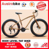 Wholesale The Lowest Price Fatbike Fat Bike 21, 24 Speed 20, 24, 26 Inch Fat Tire Bike Snow Kick Bike for Sale for Sale Free Tax