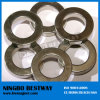 High Quality Permanent Large Ring Magnets