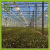 High Quality Modern Design PC-Sheet Greenhouse