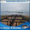 Tilapia Fish Farm, Fish Cage for Fresh Water Fish Farming