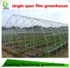 Tunnel Film Greenhouse for Vegetables Tomato
