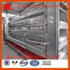 Design Layer Chicken Cage/Automatic Poultry Farming Equipment for Poultry Farm