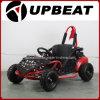 Upbeat 80cc Mini Buggy Kids off Road Go Kart for Sale