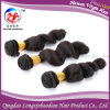 Loose Wave Cuticle Remy Brazilian Virgin Hair Human Hair (HLWB-A446)