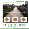 Wood Plastic Composite Solid Board Decking Tile
