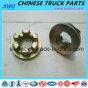Genuine Flange Nut for Sinotruck HOWO Truck Part (Wg79000320013)