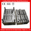 Injection Molding, Plastic Mold for Household Appliance Part (MLIE-PIM025)