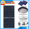 Transparent 100W Poly Solar Panel
