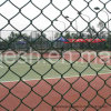 2017 PVC Coated Chain Link Fence, Popular in The Us