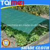 Agro Shade Net for Vegetable Nursery -Taimei