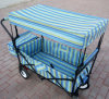 Folding Utility Wagon for Kid with Canopy