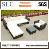 Rattan Furniture/Rattan Outdoor Furniture/Rattan Sofa (SC-B8850)