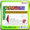 2013 Gift VIP Magnetic Stripe Card