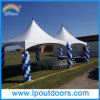 20X40′ Outdoor Aluminum High Peak Frame Tent Wedding Marquee