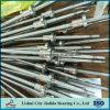 China C7 Precision 400mm Ball Screw for CNC Lathe (Sfu1204)