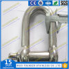 Stainless Steel M16 D Shackle AISI304 AISI316 Shackle