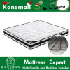 Bounce Steel Continous Spring Mattress Cheap Price High Quality