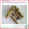 Elevator Bolts, Zinc, Stainless Steel.