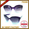 F6088 Big Plastic Frames Fashion Sunglasses Wholesale in China