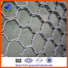 High Quality Hexagonal Tortoiseshell Net (HP-CX)