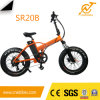 Fat Tire Electric Bike Small Folding Bicycle 250W Foldable Ebike
