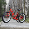 Female 26′ Beach Electric Fat Bike (RSEB-506)