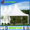 Easy up Outdoor Beach and Wedding Party Canopy Tent