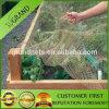 Vineyard 100% Virgin Bird Barrier Net