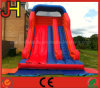 Best Price Inflatable Water Slide for Sale