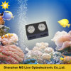 Dimmable Sunrise and Sunset Aquarium for Coral Reef