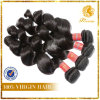 Loose Wave Weft 2014 100% Brazilian Virgin Remy Human Hair Extension (TFH-NL0072)